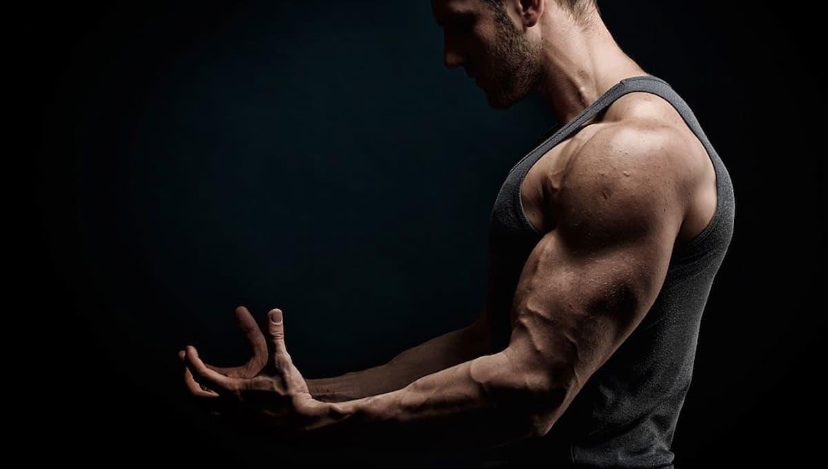 régénération musculaire et cbd